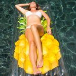 Giant Clear Pineapple Float