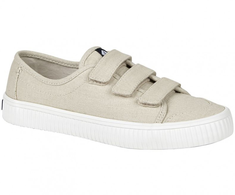 Women's Crest Creeper Loop Sneaker