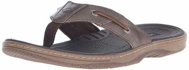 Sperry Baitfish Thong